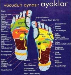 aymasaj3